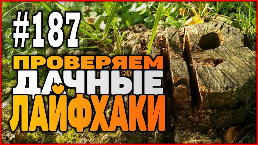#187 Проверил дачные лайфхаки